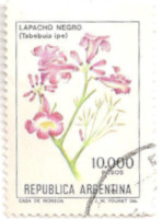 Argentina-1752-AI9