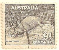 Australia-191-AK32