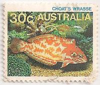 Australia-925.1-AA8