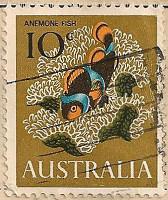 Australia-391-J7