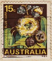 Australia-422-J4