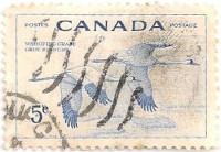 Canada-479-AJ35
