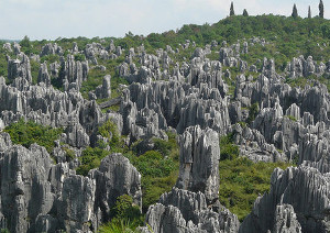 China Shilin Stone Forest