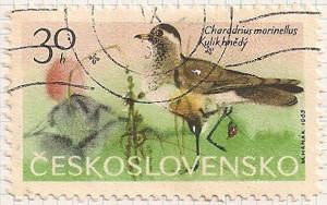 Czechoslovakia 1519 i96