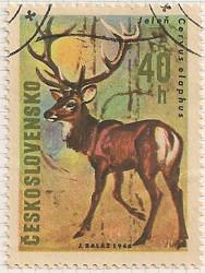 Czechoslovakia 1613 i104