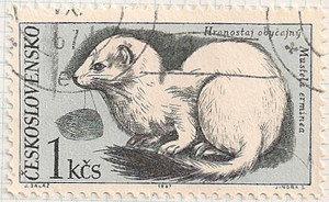 Czechoslovakia 1684 i104