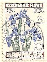 Denmark-591-AN22