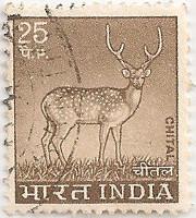 India-722-AH23