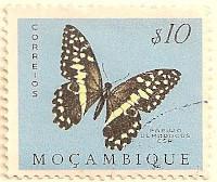 Mozambique-472-AN53