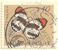 Mozambique-476-AN53