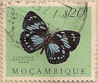 Mozambique-474-J74