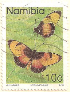 Namibia-624-AN49
