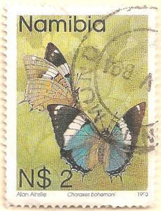 Namibia-633-AN49