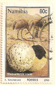 Namibia-664-AN51