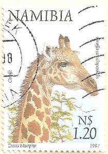 Namibia-760-AN50