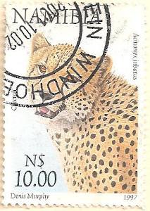Namibia-763-AN50