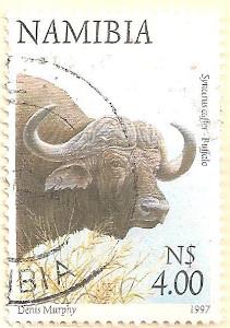 Namibia-764-AN50