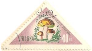 Poland-1089-AN101