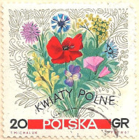 Poland-1761.2-AN103
