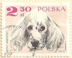 Poland-1882-AN113