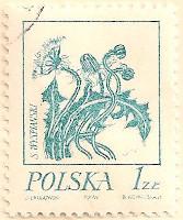 Poland-2282-AN100