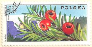 Poland-2360-AN103