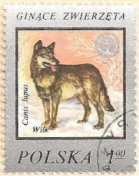 Poland-2491-AN113