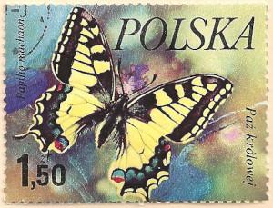Poland-2506-AN102