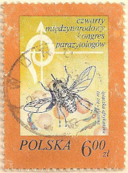 Poland-2555-AN120