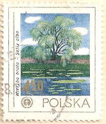 Poland-2560-AN124