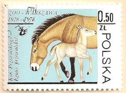 Poland-2578-AN101