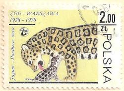 Poland-2581-AN101