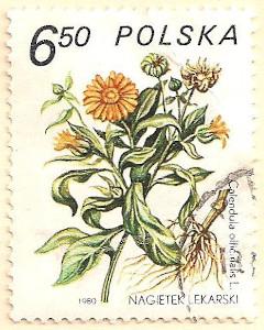 Poland-2696-AN103