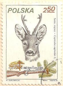 Poland-2755-AN113