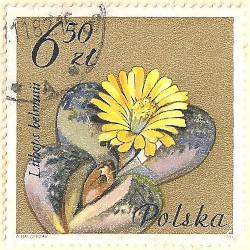Poland-2792.1-AN103