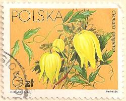 Poland-2922-AN100