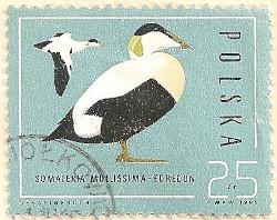 Poland-3015-AN100