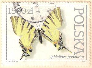 Poland-3372-AN102