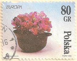 Poland-3561-AN100
