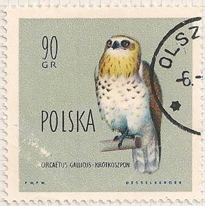 Poland 1208 i100