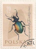 Poland 1269 i29