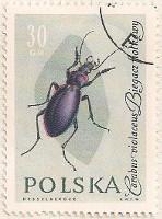 Poland 1270 i29