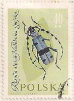 Poland 1271 i29