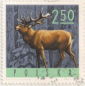 Poland 1619 i104