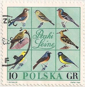 Poland 1697 i100
