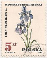 Poland 1754 i27