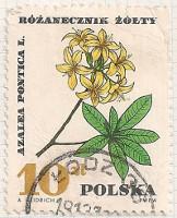 Poland 1755 i27