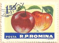Rumania-3046-AN143
