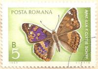 Rumania-3649-AN138