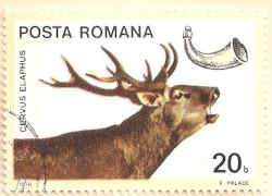 Rumania-4234-AN136